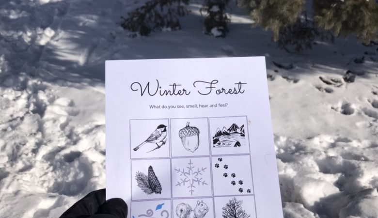 Forest scavenger hun and sit spot printable for preschoolers